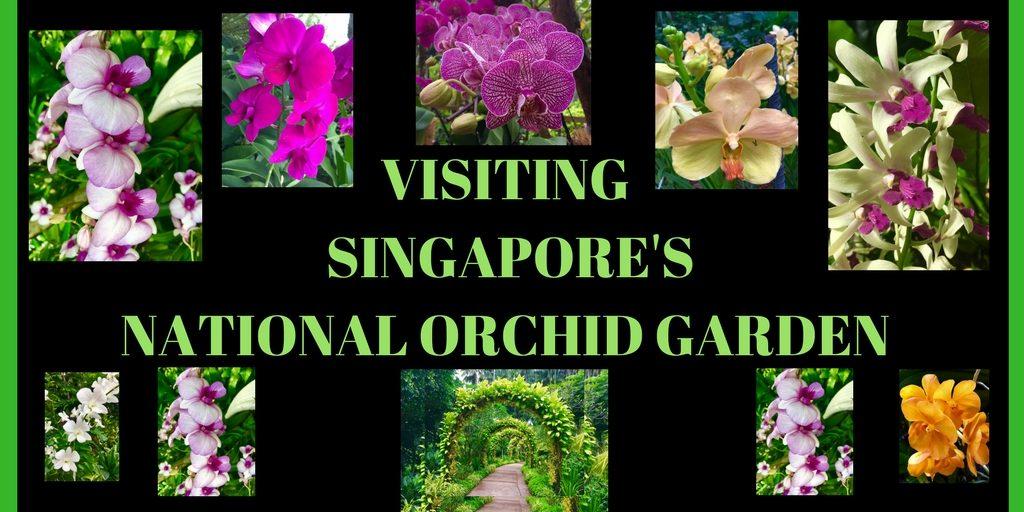 visit singapore national orchid garden