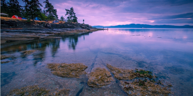 Saltspring Island - THINGS TO DO ON VANCOUVER ISLAND