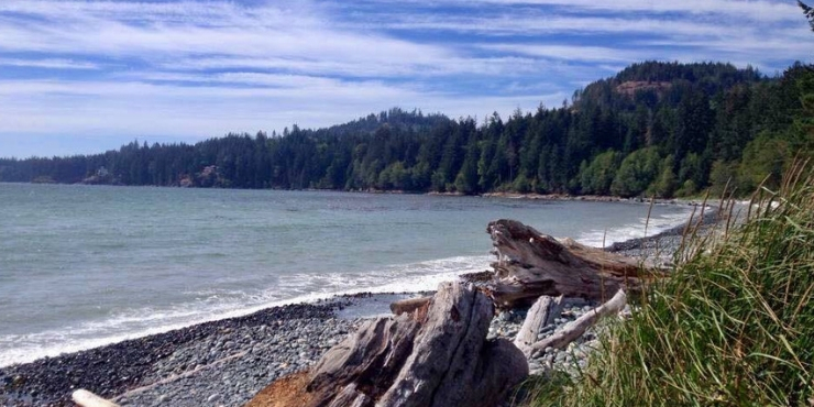 View of a beach on Vancouver Island