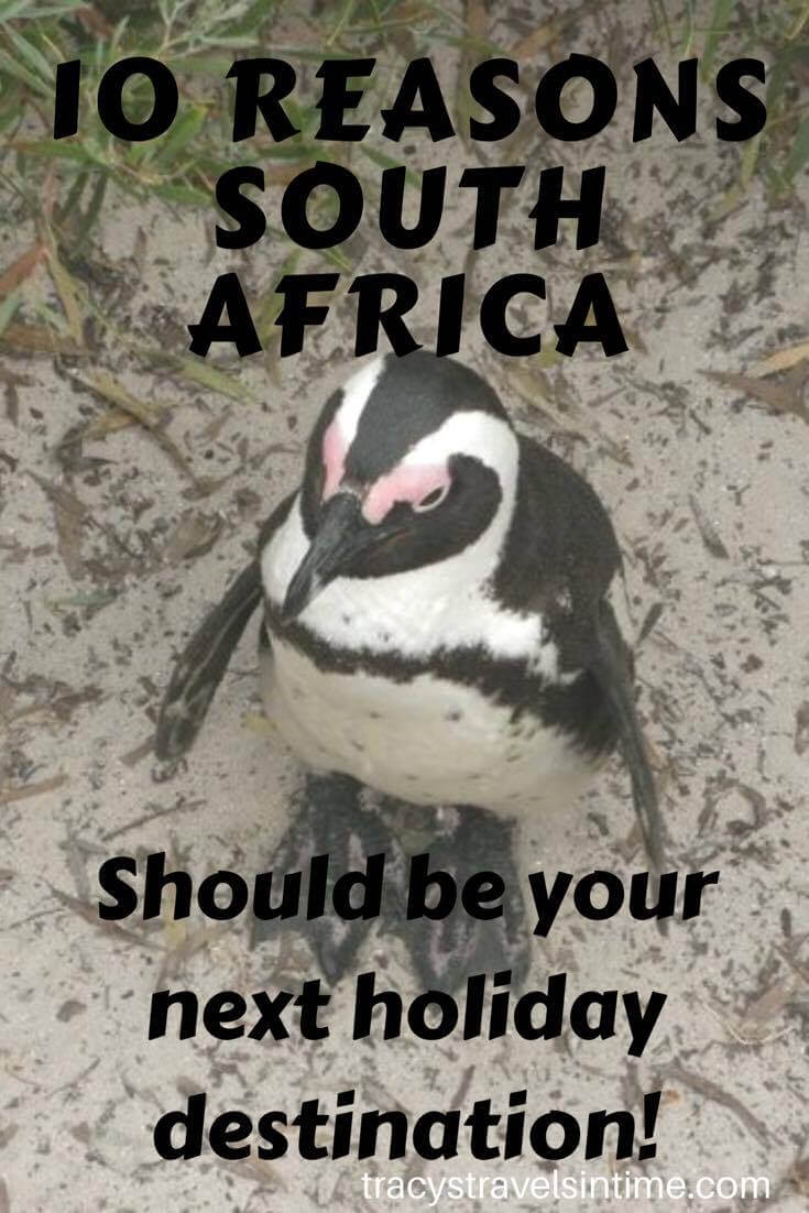 From tracystravelsintime - 10 reasons SOUTH AFRICA should be your next travel destination!