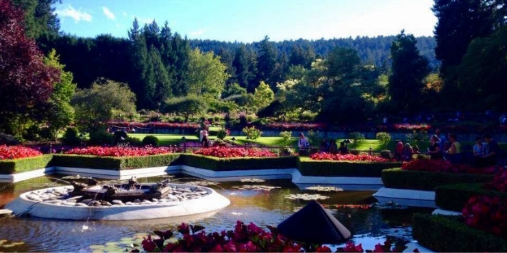 The star pond at Butchart Gardens