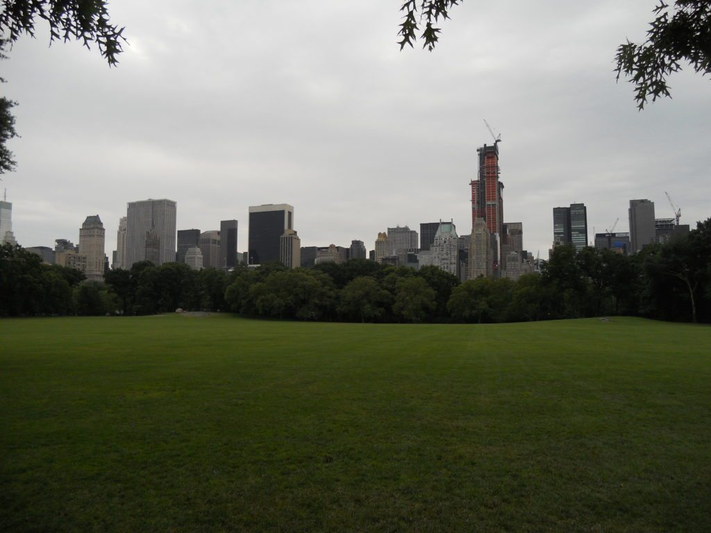 View from Central Park of New York