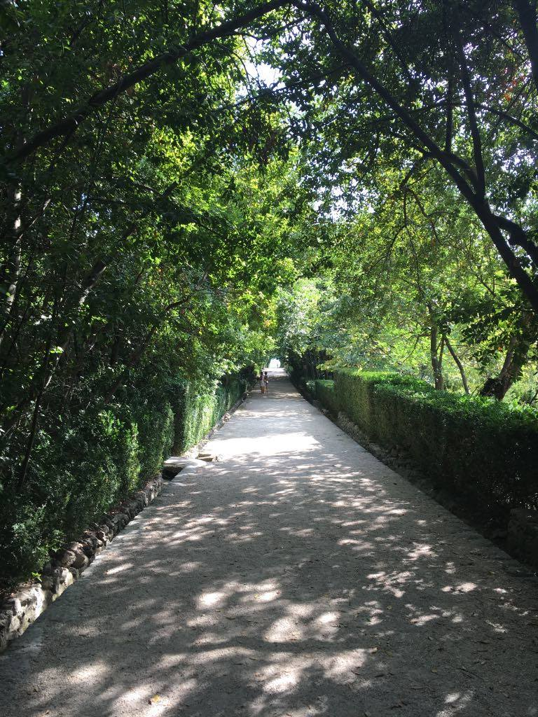 path to the gardens