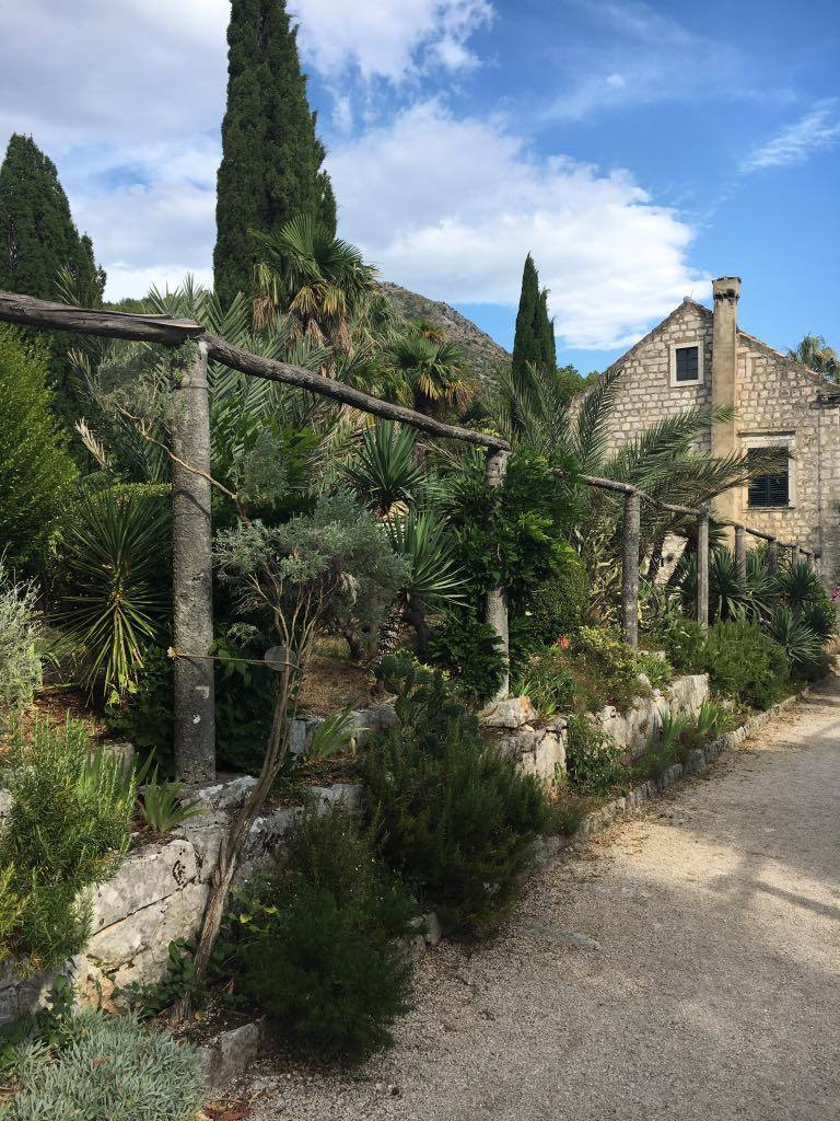 the gardens at Trsteno
