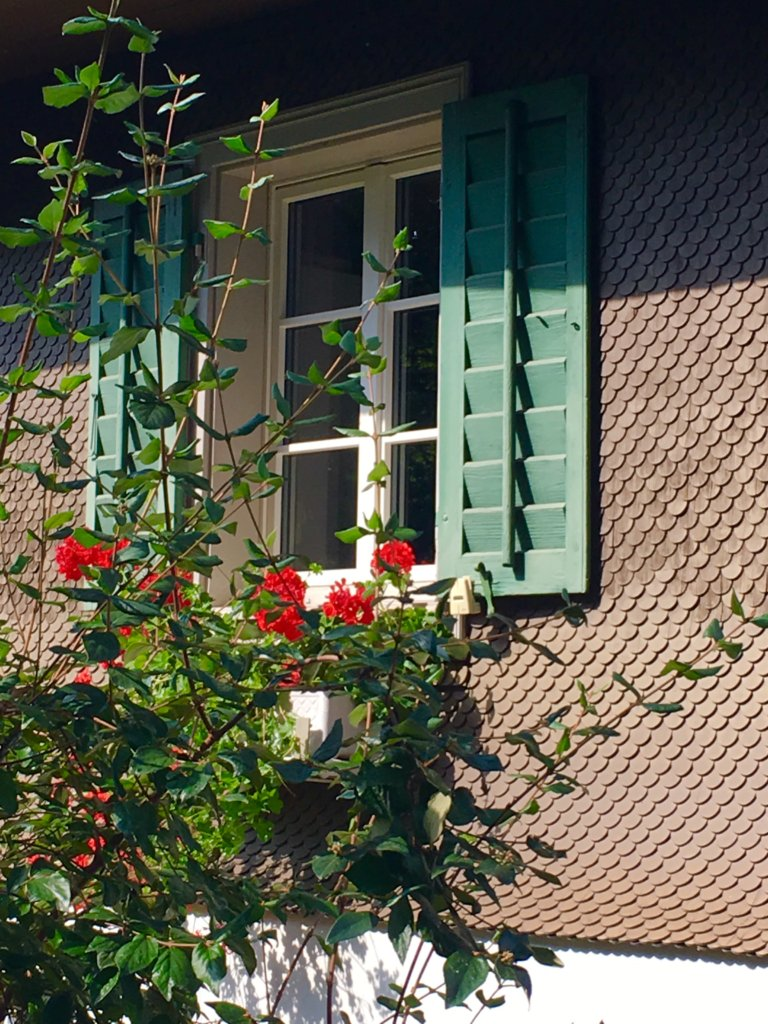 beautiful Swiss windows