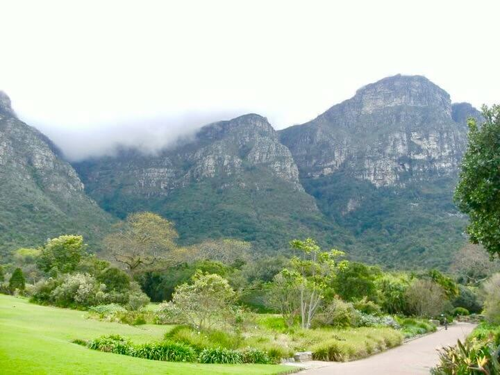 Kirstenbosch insider guide to cape town