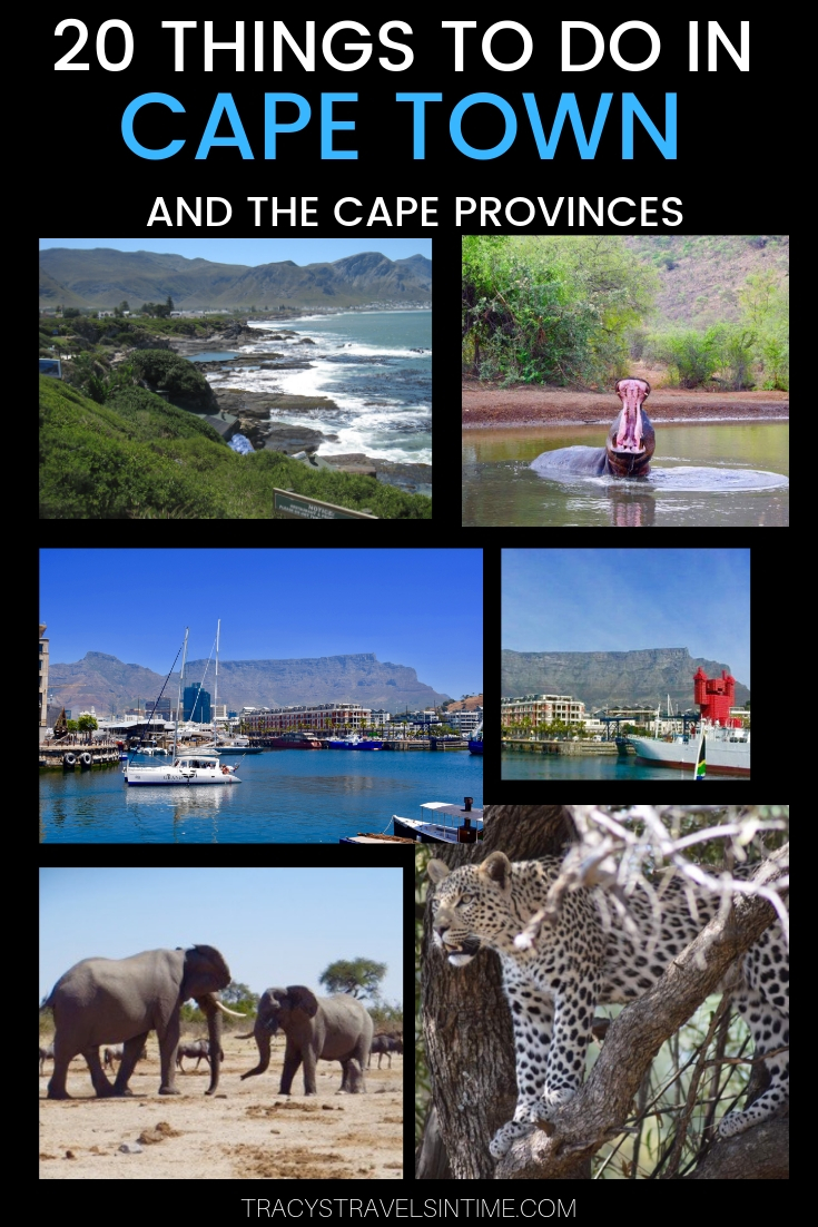 20 THINGS TO DO IN CAPE TOWN AND CAPE PROVINCES SOUTH AFRICA.jpg