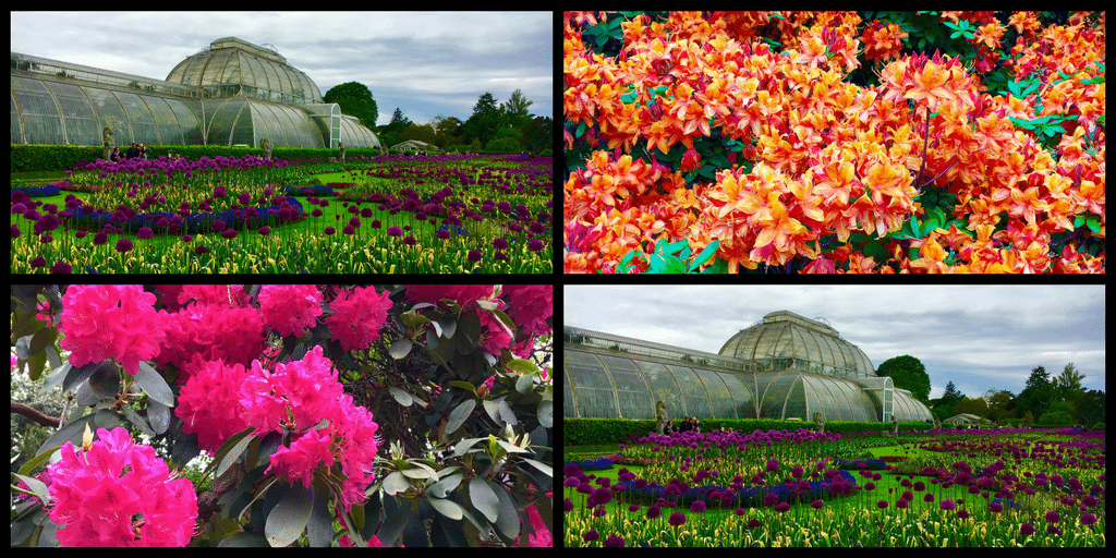 Visiting the Royal Botanic Gardens Kew London
