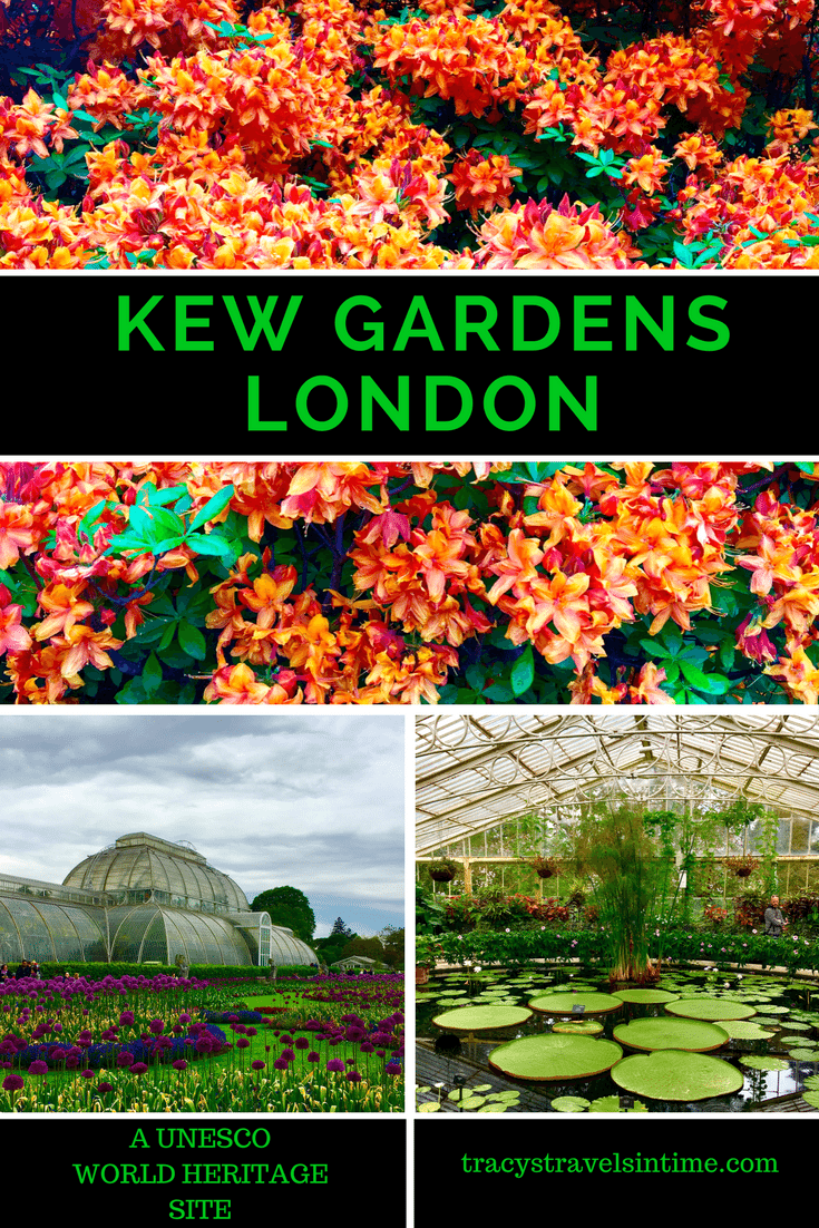 A visit to Kew Gardens in London