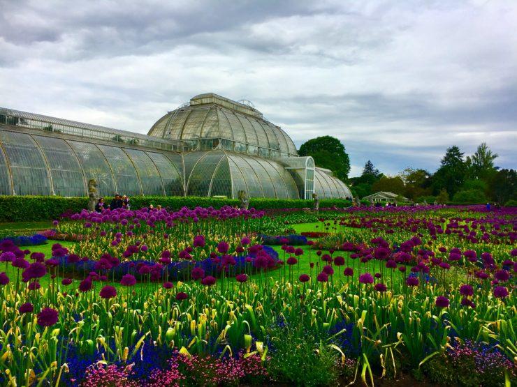 Attirant Royal Botanic Gardens Kew