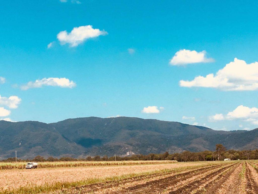 Visiting a sugar cane farm in Northern Queensland