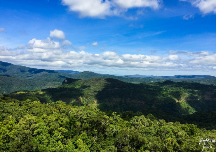   The Best Things to Do in Queensland Australia featured by top international travel blogger, Tracy's Travels in Time: