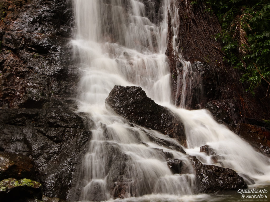   The Best Things to Do in Queensland Australia featured by top international travel blogger, Tracy's Travels in Time: Kondalilla Falls