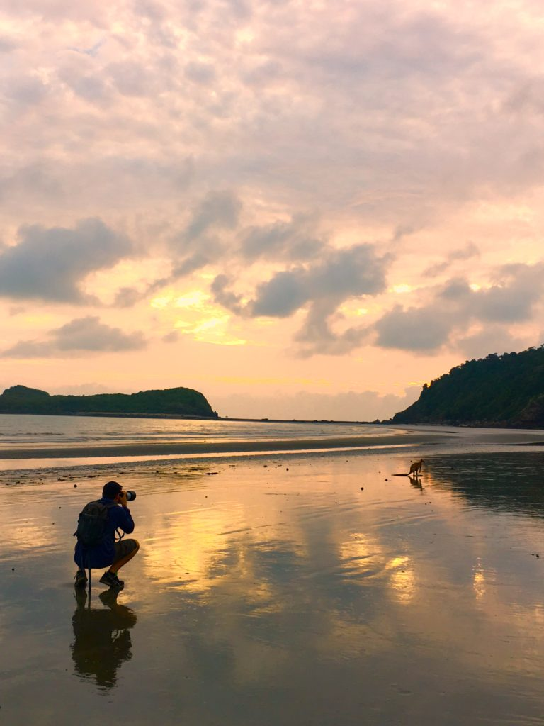 A man taking a photograph of a wild kangaroo on a beach at sunrise