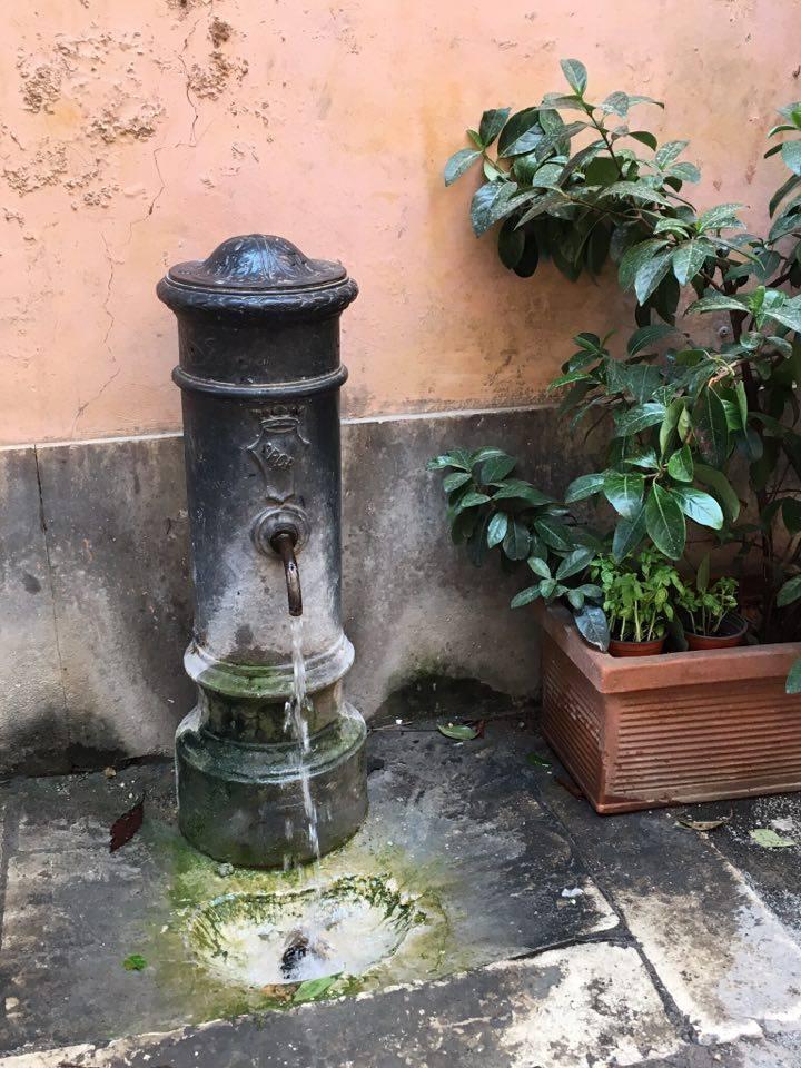 nasoni IN ROME