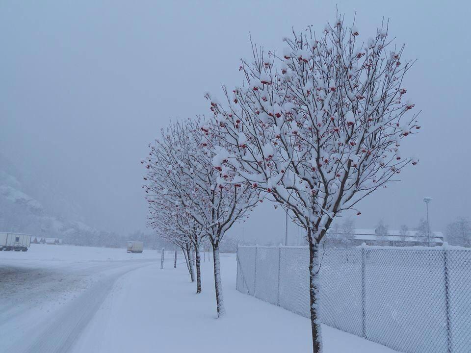 snow in Laerdal - visiting Laerdal in Norway
