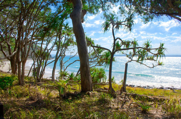 Noosa in Queensland