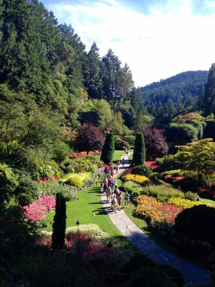 great view over Butchart Gardens
