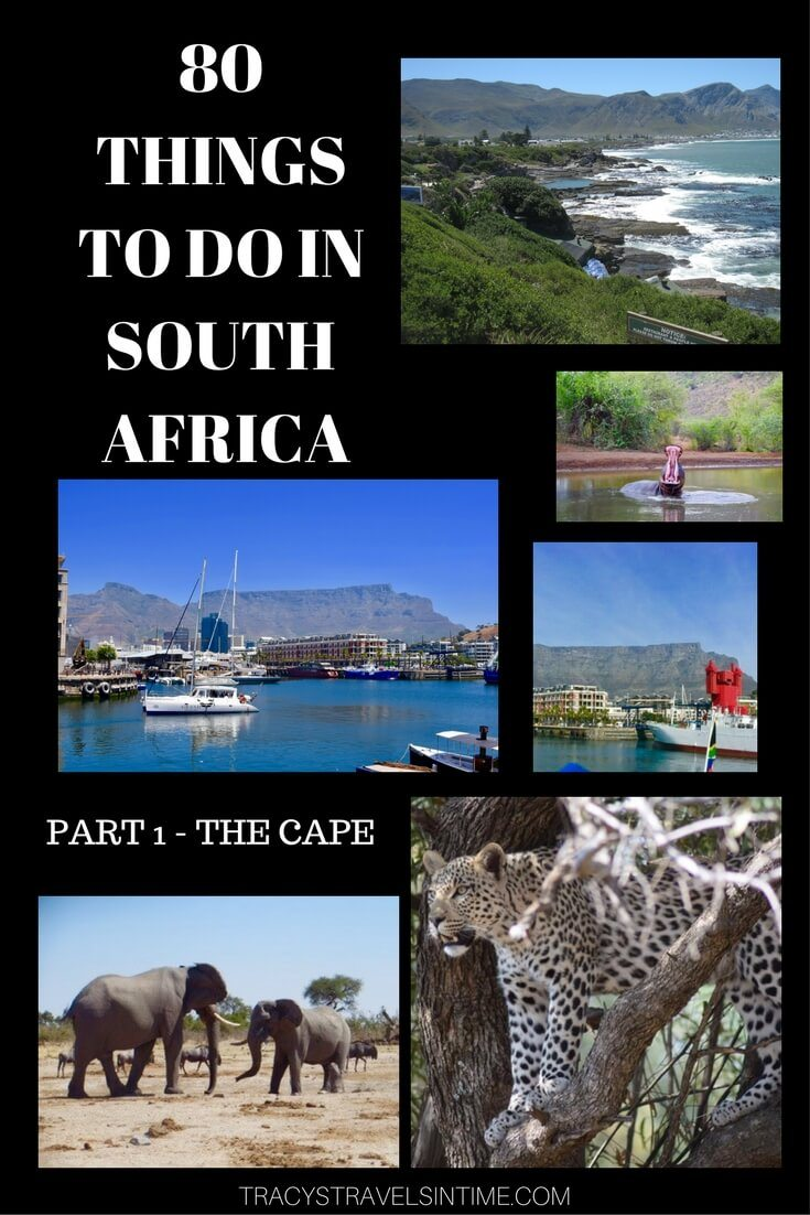 80 things to do in south africa