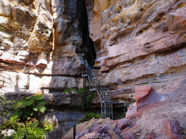 Steps up to Carnarvon Gorge National Park