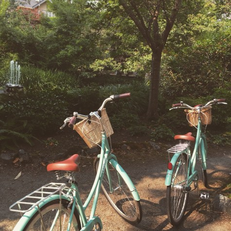 bikes to hire on Vancouver Island