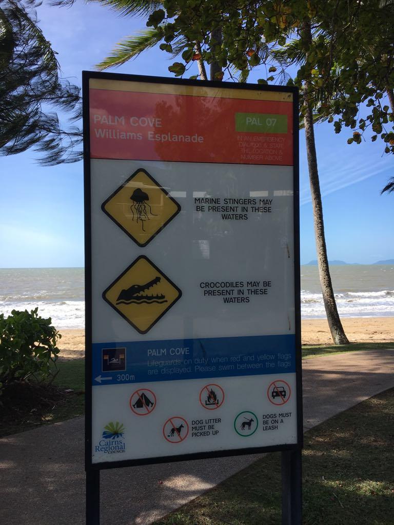 crocodile warning sign at Palm Cove