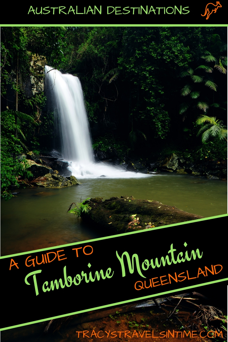 | Tamborine mountain travel guide featured by top international travel blogger, Tracy's Travels in Time
