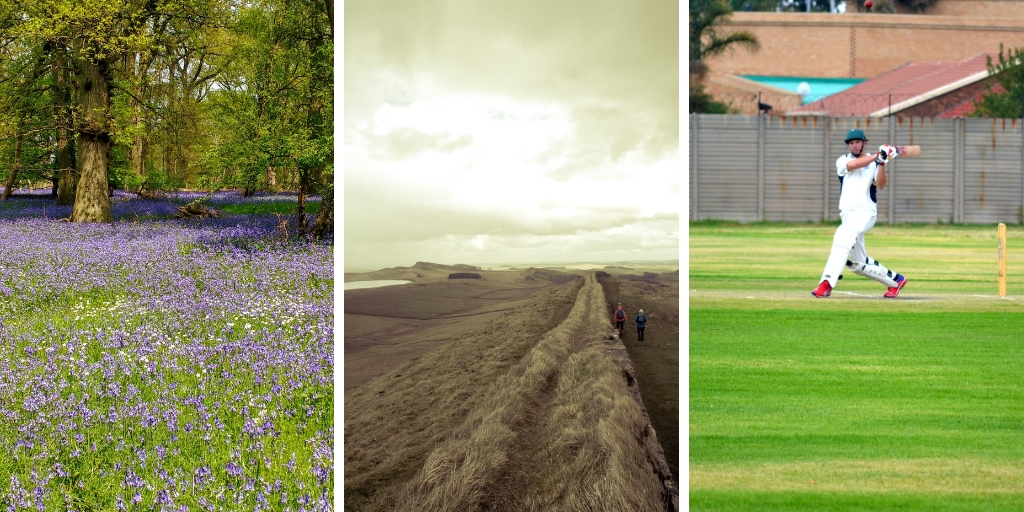 A bluebell wood, Hadrian's wall and a cricketer