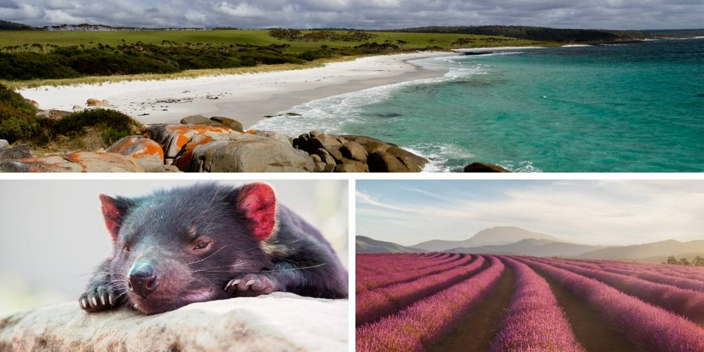 How to make the most of a trip to Tasmania – 10 essential travel tips you need to know