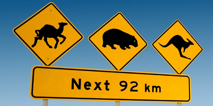Animal signs on the road Australia