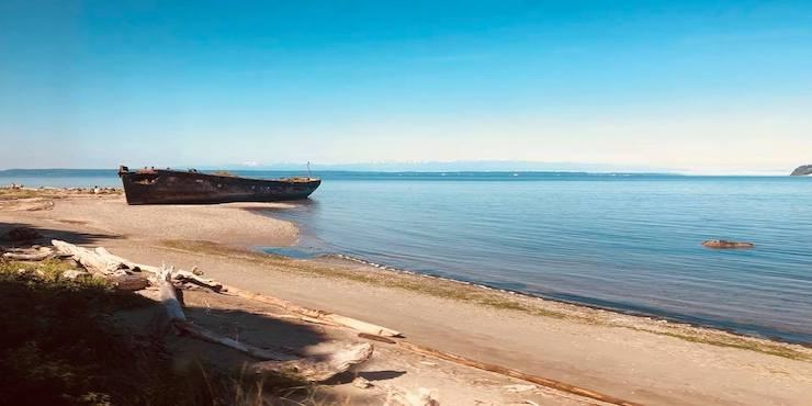 6 Scenic Amtrak Train Trips to Take in the USA, featured by top international travel blogger, Tracy's Travels in Time:  View from the Amtrak Cascades