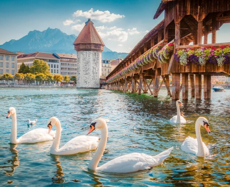 The Best Things to do in Lucerne Switzerland featured by top international travel blogger, Tracy's Travels in Time