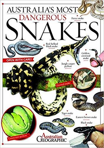 Australia's Most Dangerous Snakes