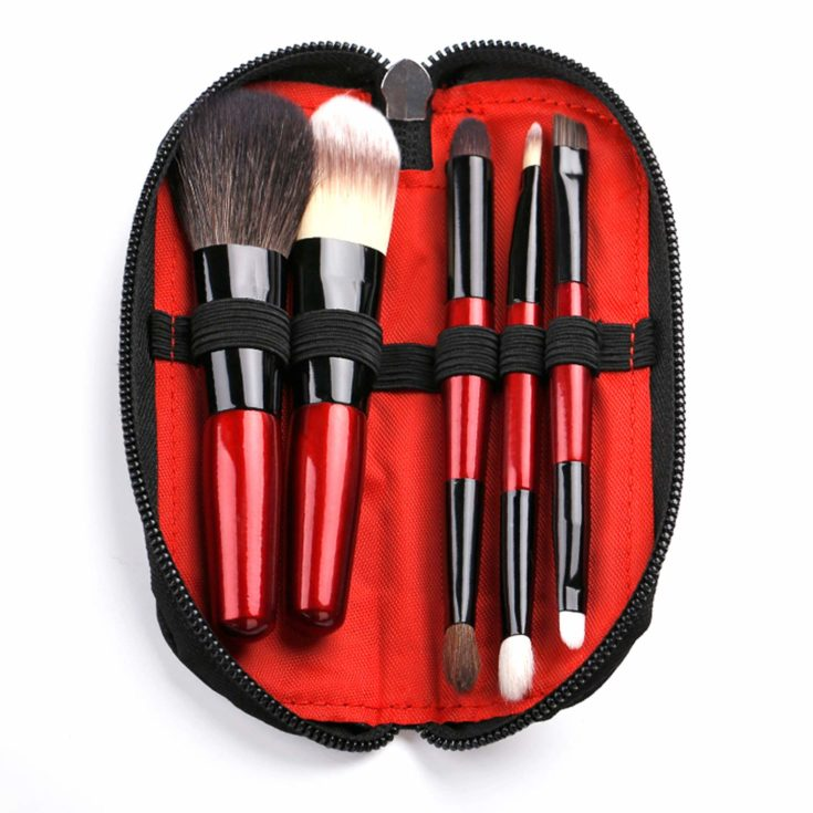 Protable Mini Makeup Brushes Set with Travel Case