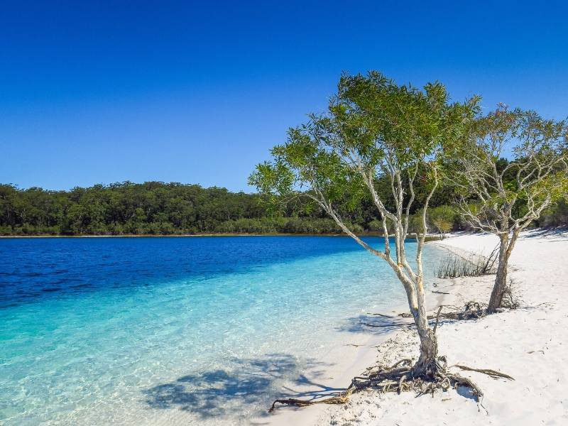 An inland lake on Fraser Island in Australia