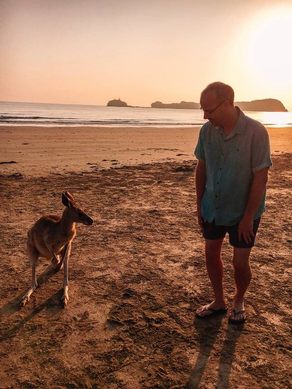A man standing next to one of the  Cape Hillsborough kangaroos