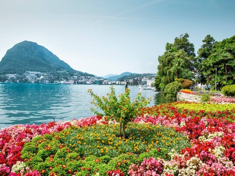 Colourful flowerbeds on the edge of a lake