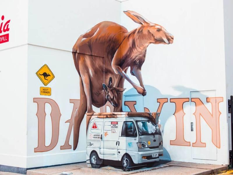 Kangaroo street art in Darwin