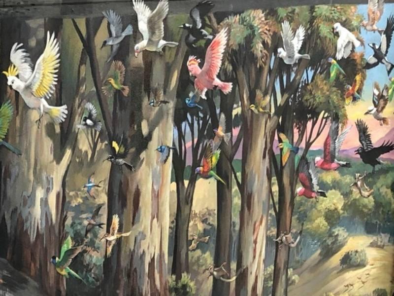 Australian birds fill this colourful street art in Perth
