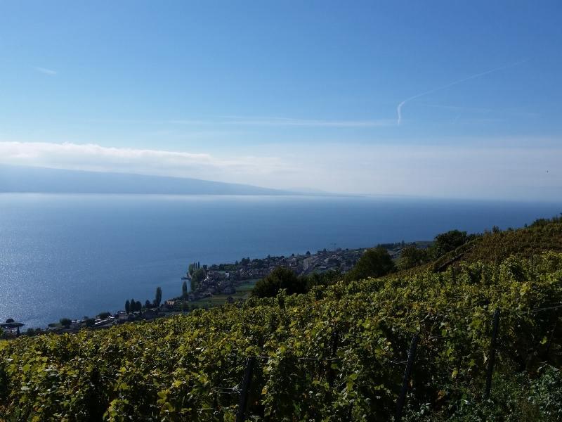 View of Lake Geneva in Switzerland