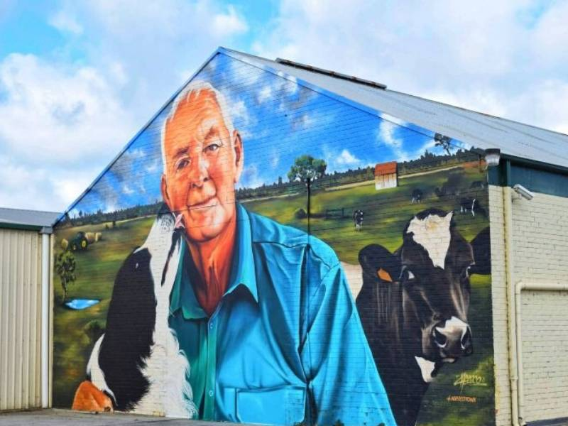Street art of a farmer and his dog and cows in Yarram Australia an example of Australian street art