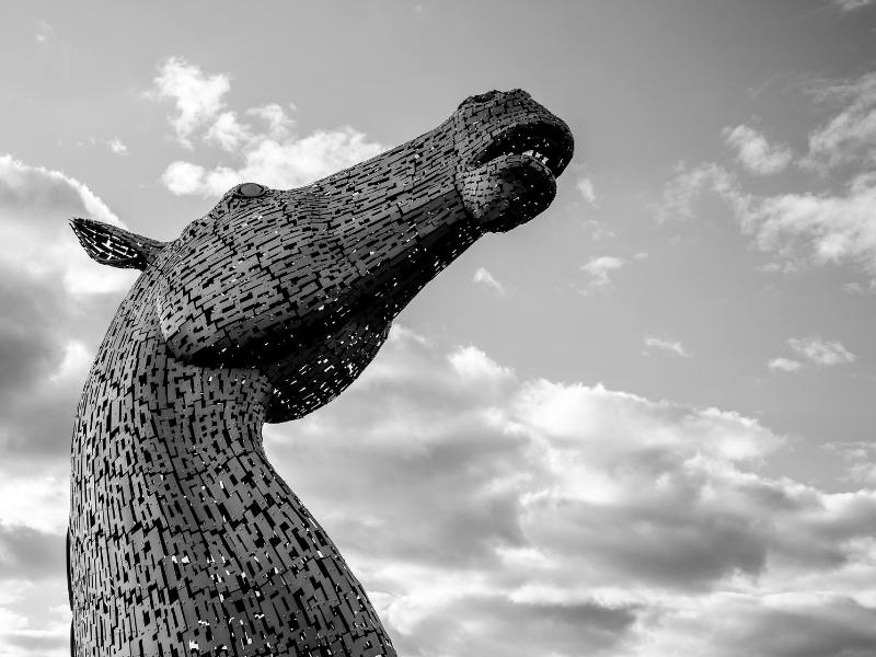 One of the Kelpies which you can see when visiting the Kelpies in Falkirk.