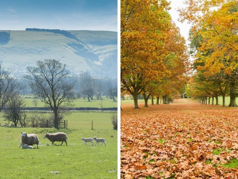 Expect to see lots of lambs in spring and lots of beautiful foliage in autumn in the UK
