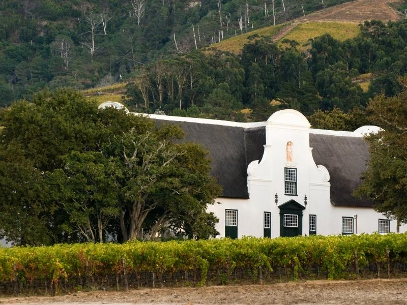 Groot Constantia in South Africa