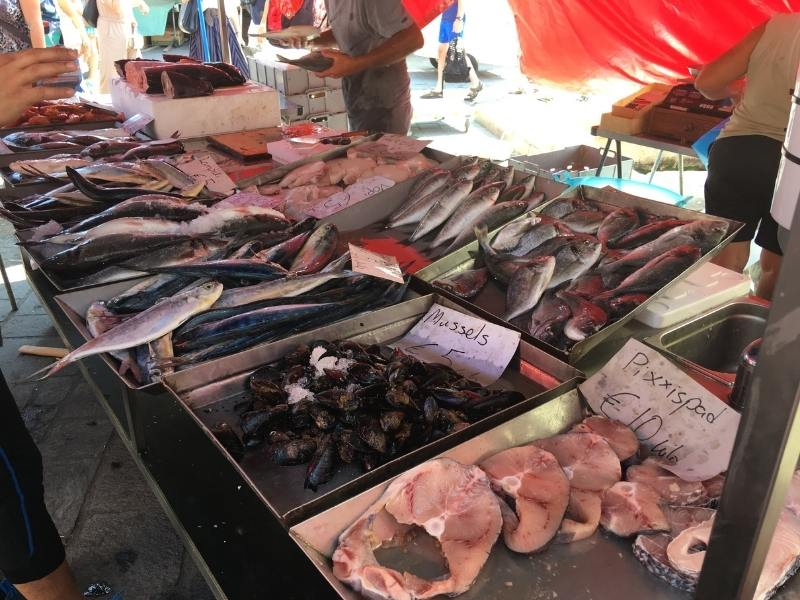 malta travel tips - visit the markets to see Fish on sale such as this stall in Marsaxlokk market in Malta.