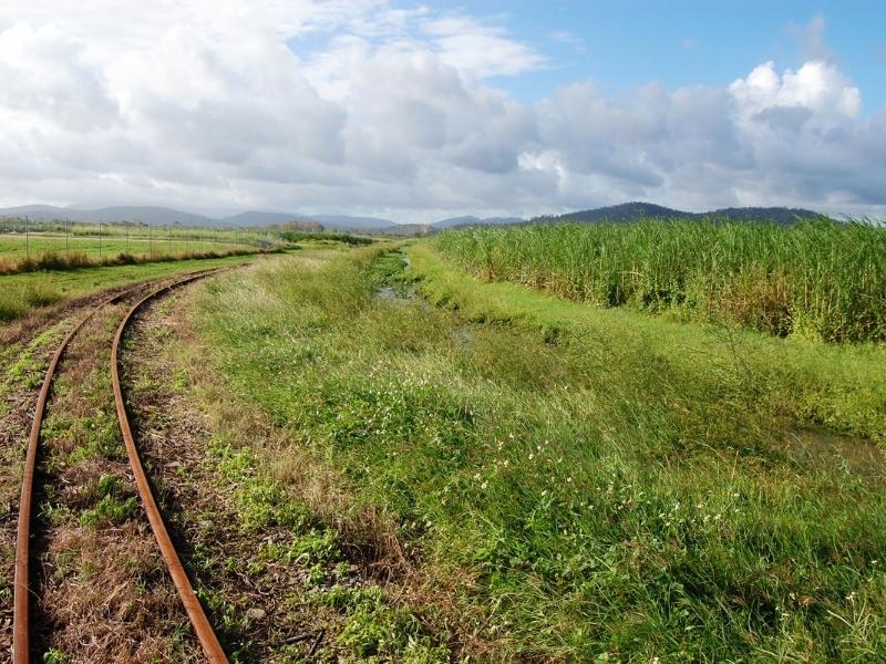 Sugar cane fields in Queensland.